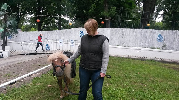 kucyki-pony