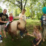konie dla dzieci
