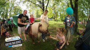 konie_dla_dzieci_warszawa