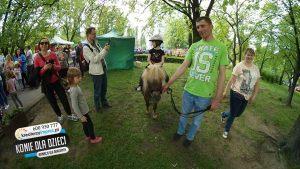 kucyki_pony