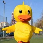 kurczak maskotka